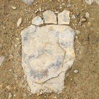 Они существуют. А вот и ступня каменного голема... :: Dmitry Saltykov