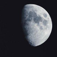 Лунный пейзаж :: Владимир Кириченко  wlad113
