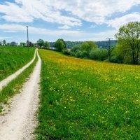 конец апреля , юг Германии ,окраина деревни :: Viktor Schwindt