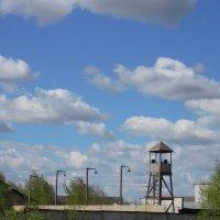 Декорации концентрационного лагеря :: Тамара Бедай