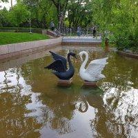 Майский вечер в Алма-Ате. :: Anna Gornostayeva
