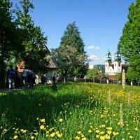 По пути к монастырю Мариахильф (Kloster Mariahilf — Монастырь Девы Марии-Помощницы)...(Пассау) :: Galina Dzubina