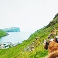 Фарерские острова :: Valentina Ariel