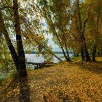 Роняет лес багряный свой убор :: vladimir Bormotov