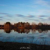 Весенний пейзаж :: Elena Wise