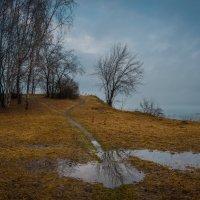 След весны :: Евгений Гецев
