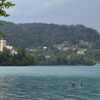 Озеро Блед :: Татьяна Ларионова