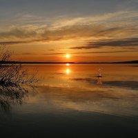 Восторг закатом :: галина северинова