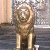 Шествие львов :: Raduzka (Надежда Веркина)