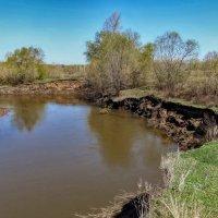 Покрывает зелень берега реки... :: Наталья Ильина
