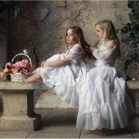 Английские розы :: Виктория Иванова
