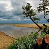 Непогода :: Lusi Almaz