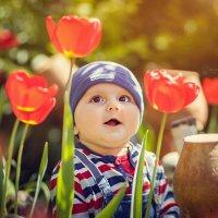 Маленький ценитель весенней красоты... :: Viktoria Lashuk