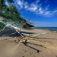 Балтийский пейзаж :: Lusi Almaz