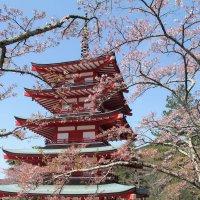 Япония. Шимойошида. :: Виктория