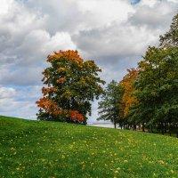 Осень :: alteragen Абанин Г.