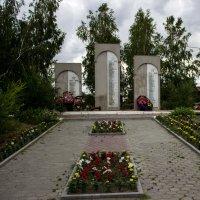 Погибшим в годы ВОВ :: Светлана SvetNika17