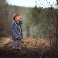 Малыш услышал дятла стук :: Татьяна Кам