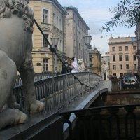на Львином мосту :: Димончик