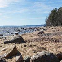 Финский залив :: Nika Polskaya