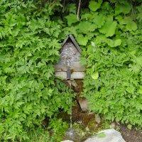 Горный   источник   воды   в   Квасах :: Андрей  Васильевич Коляскин