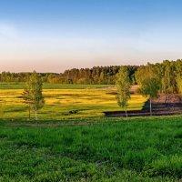 Latvia 2018 Sēja 090518 :: Arturs Ancans