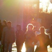 в лучах вечернего солнца :: Андрей + Ирина Степановы