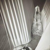 Fly :: Vitaliy Dankov