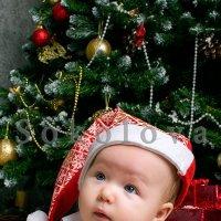 Новогодний гномик :: Наталия Соколова