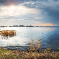 Вышневолоцкое водохранилище :: Юлия Батурина