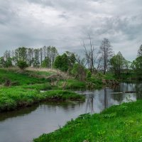 Забытая река :: Дмитрий Звонарев