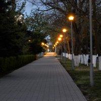 Раннее утро в Анапе :: Владимир
