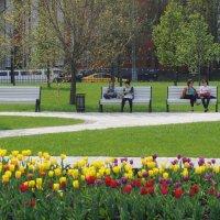 Весна в парке :: Ольга