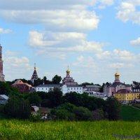Свято-Иоанно-Богословский монастырь в Пощупово :: Наталия Соколова