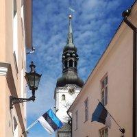 По улочкам старого Таллина :: veera (veerra)