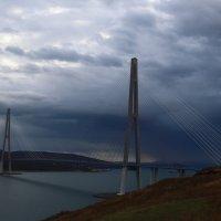 Мост на остров Русский :: Татьяна Панчешная