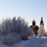зима :: Наталья NataliNkaC Смирнова