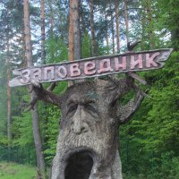 Вход на территорию Приокско-Террасного заповедника :: Дмитрий Солоненко