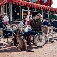 Он,она и пЁс...Гронинген.Нидерланды! :: Александр Вивчарик