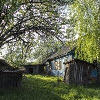 у заброшенного дома :: оксана