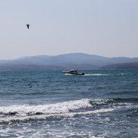 Море :: Дарья Бурмистрова