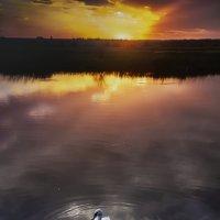 Плывущий по облакам :: Юрий Трофимов