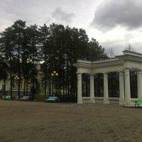 На аллее парка :: Владимир Звягин