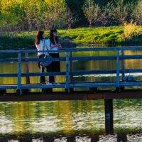 На мостике :: Dimirtyi