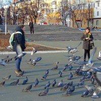 Любовь и голуби :: Люба (Or.Lyuba) Орлова