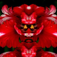 Красный самурай :: Алекс Андр