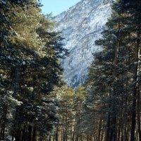 по дороге в горы :: валентин яблонский