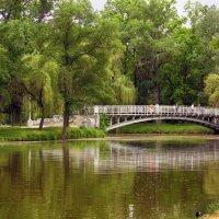 В нашем парке весна! :: barsuk lesnoi
