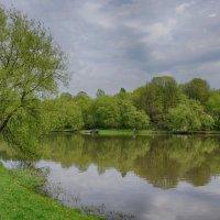 Весенний пейзаж :: Ольга