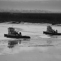 Ледокольный флот Колымской судоходной компании :: Александр Артюхов